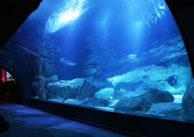 Paris – Aquarium de Paris – 2 000 personnes