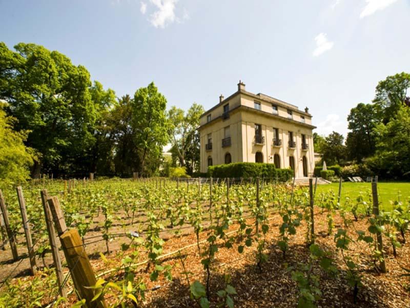 Hôtel Particulier de la Vigne